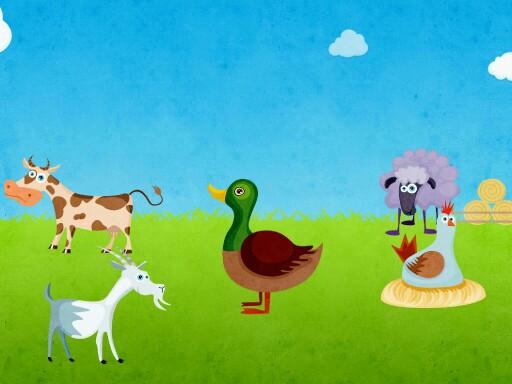 cluck by Kiersten gatewood
