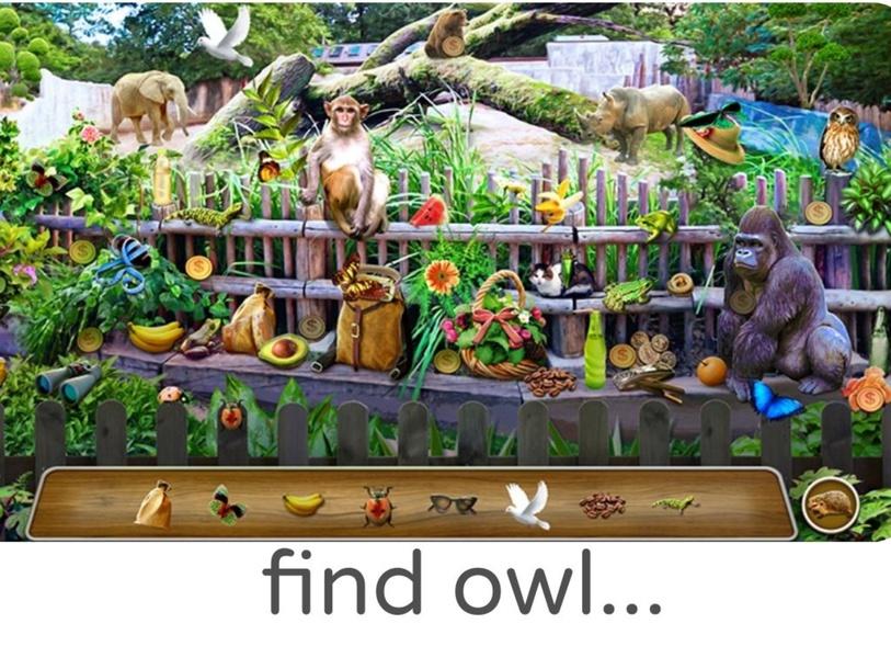 find hidden animals by nurul jahaya