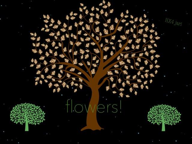 flowers! by HX4 jari