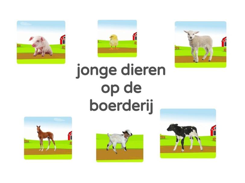 jonge dieren op de boerderij by Marian van Roosmalen