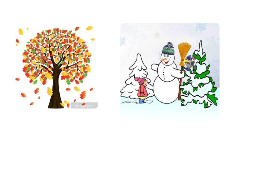 le 4 stagioni by raffa dg