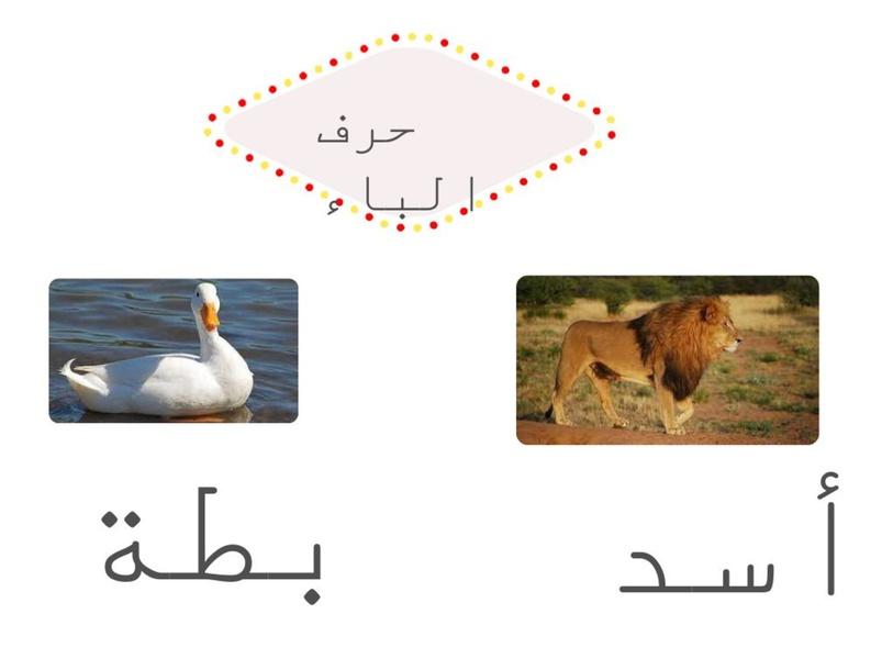 m,. by raghad abdo