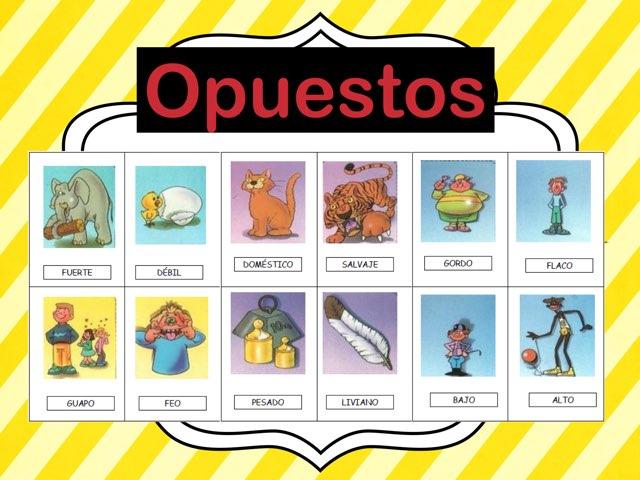 opuestos/Opposites by Rosalva Correa