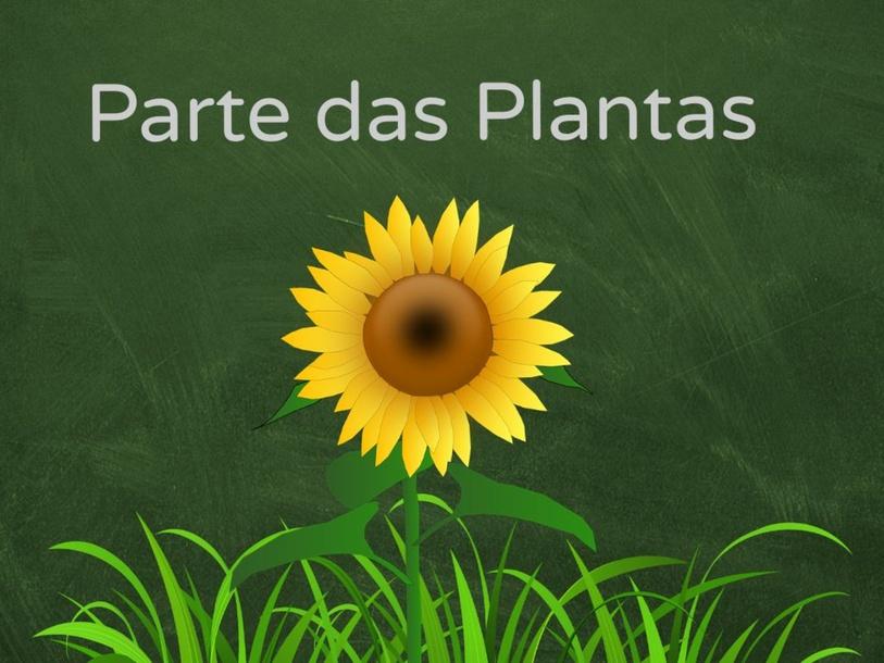 parte das plantas  by Sarah Gotierre Junkes