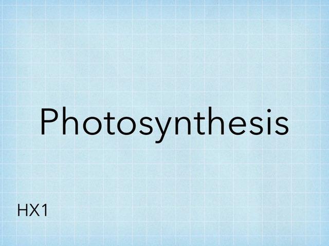 photosynthesis by HX1 seku