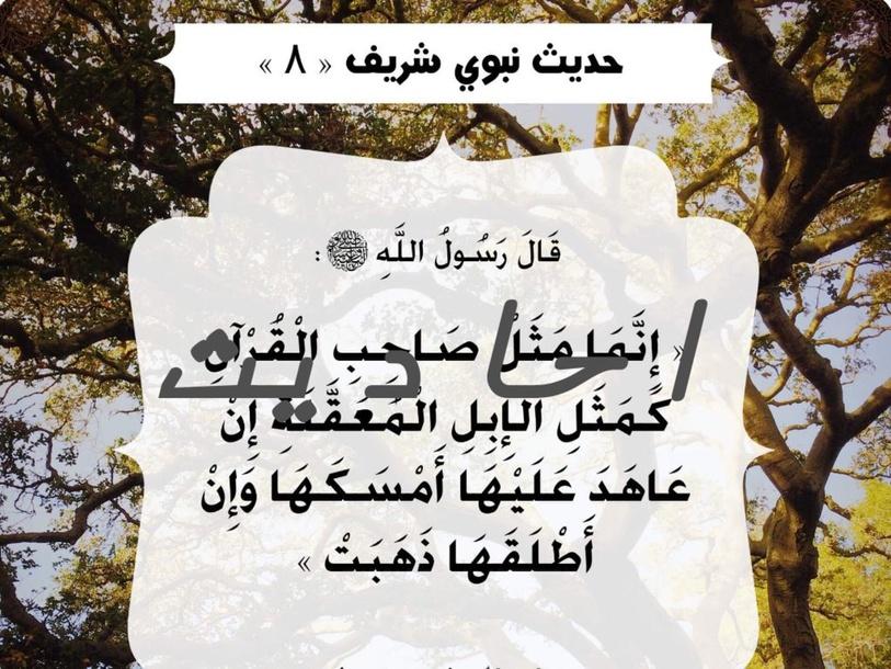 sa91la** by salafa Ahmadi