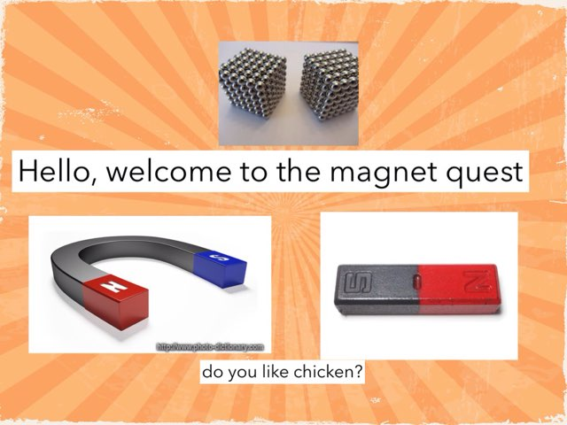 ty magnet quest by Courtney Durbin