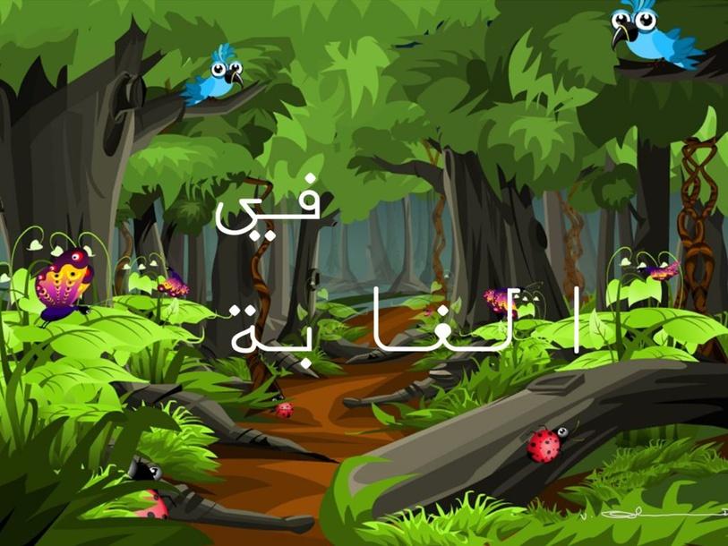 undefined by مريم زحالقة