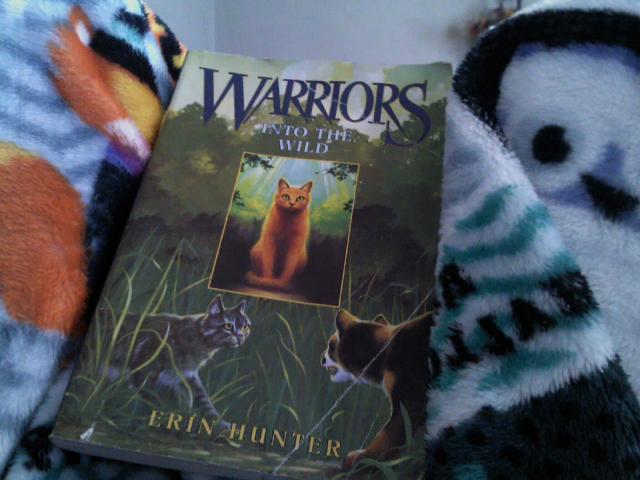 warrior by ava notario