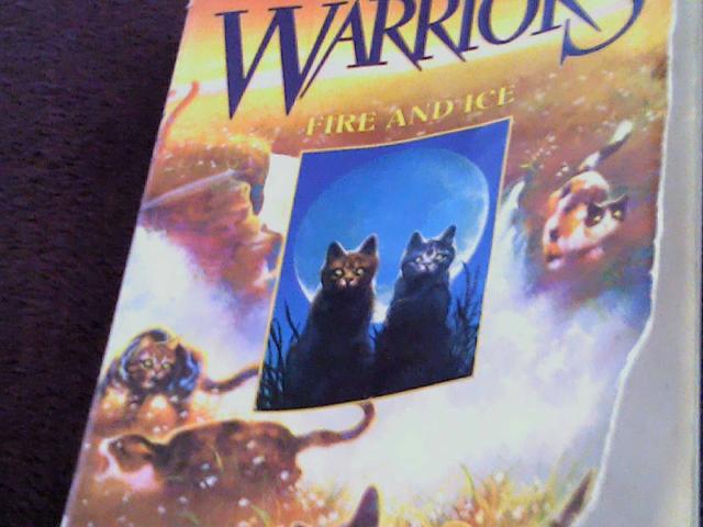 warriors by ava notario