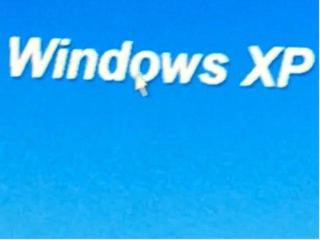 windows xp logo by Adriano Scotti